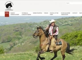 Brand new responsive website for Brian Sinnett's Passive Horsemanship western riding school